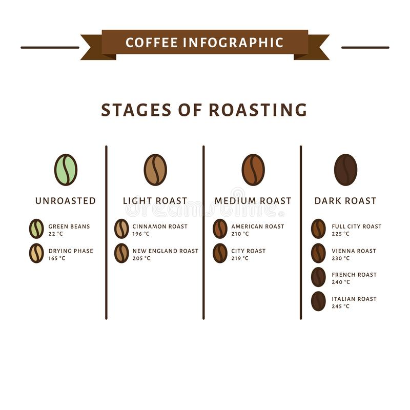 Infographic kaffe Etapper av att grilla Plan stil, vektorillus royaltyfri illustrationer