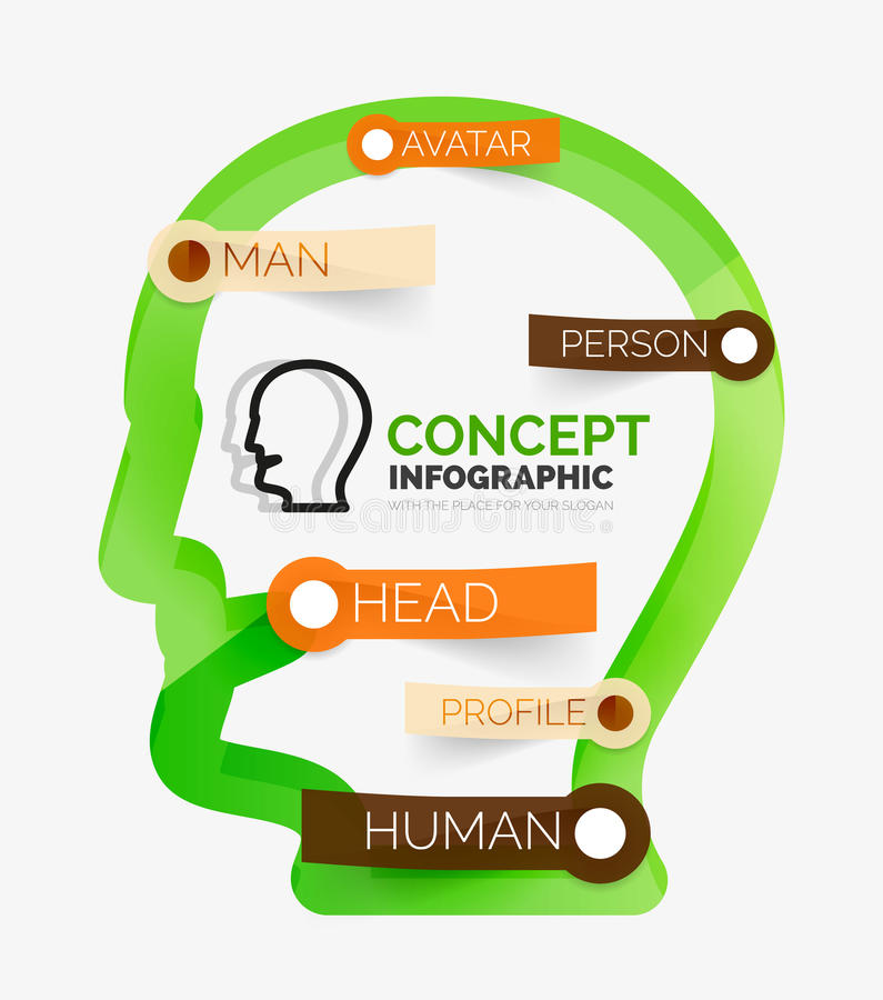 Infographic Konzept des menschlichen Kopfes, Linie Kunst vektor abbildung