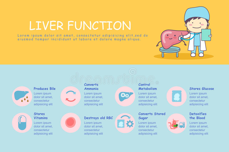 Infographic Of Liver Stock Vector Illustration Of Comic 72225787