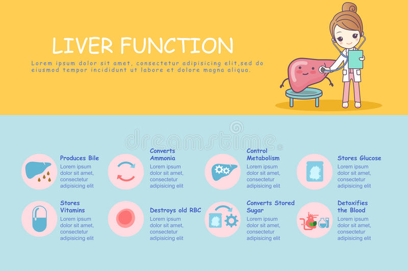 Infographic Of Liver Stock Vector Illustration Of Doctor 80683408