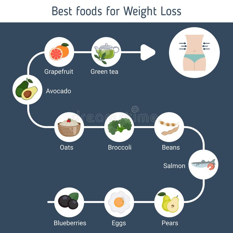 Best Foods for weight loss. stock illustration