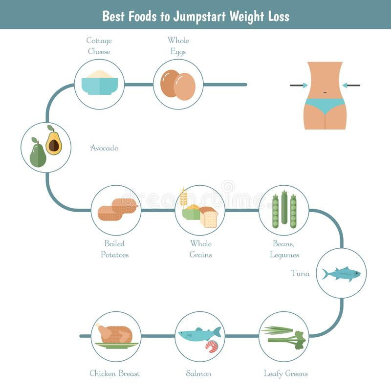 Best Foods for weight loss vector illustration