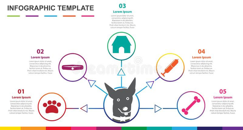 Infographic template for pet. 5 steps Mindmap diagram. Presentation vector infographic royalty free illustration