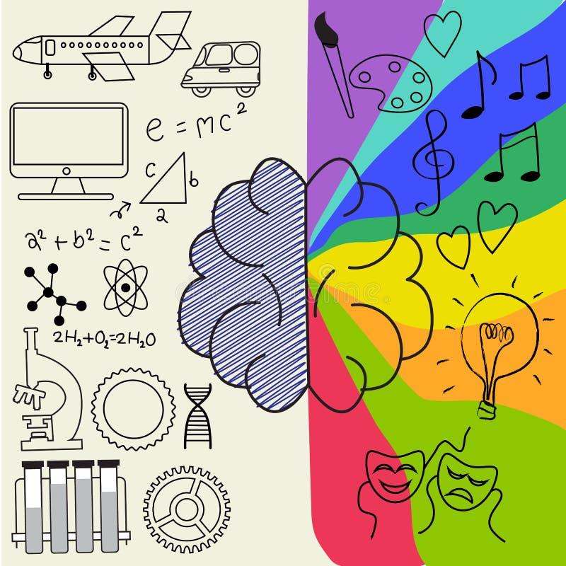 Infographic vänster och höger del av den mänskliga hjärnan vektor illustrationer