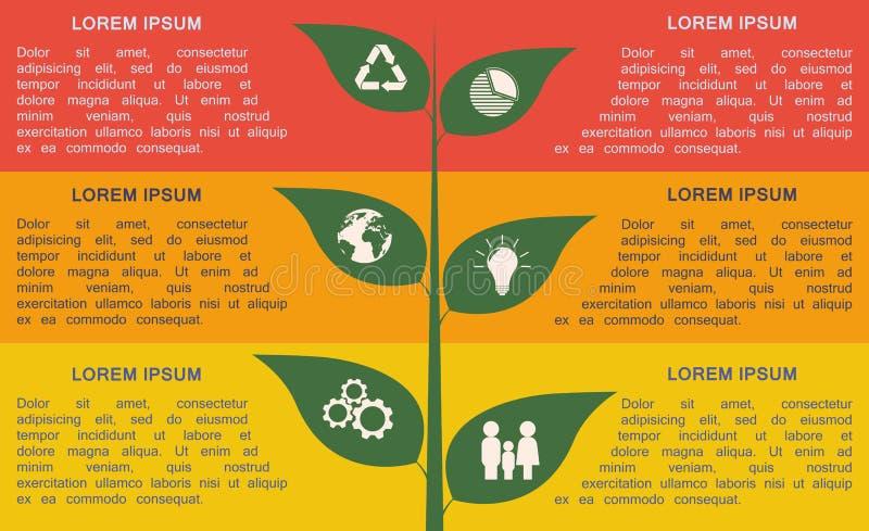 Infographic verde Molde passo a passo de Infographic ilustração stock