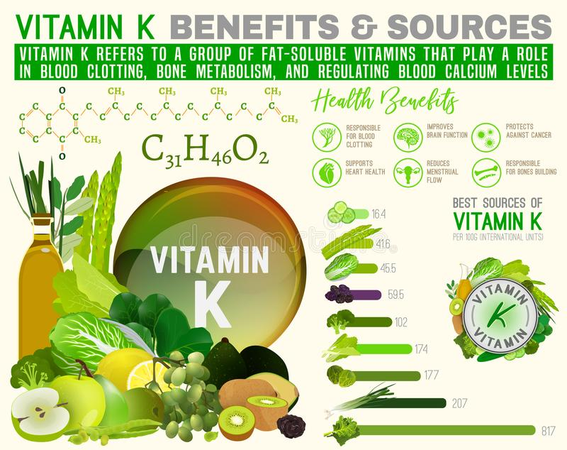 Infographic vitamine K stock illustratie