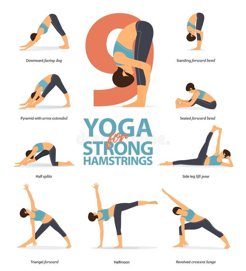 Infographic von 9 Yogahaltungen für Hüfte und Kniesehnen im flachen Entwurf Schönheitsfrau tut Übung für Hüftenstärke Vektor lizenzfreie abbildung