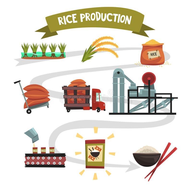 Infographicmalplaatje van rijstproductie van cultuur aan afgewerkt productcultuur, het drogen, het oogsten vector illustratie