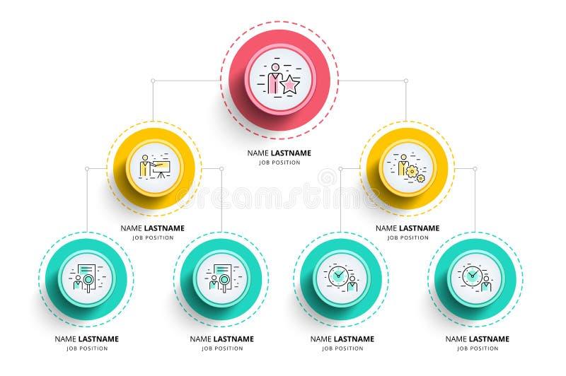 Infographics διαγραμμάτων επιχειρησιακής ιεραρχίας organogram εταιρικός διανυσματική απεικόνιση