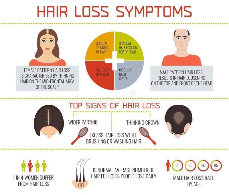 Infographics συμπτωμάτων απώλειας τρίχας διανυσματική απεικόνιση
