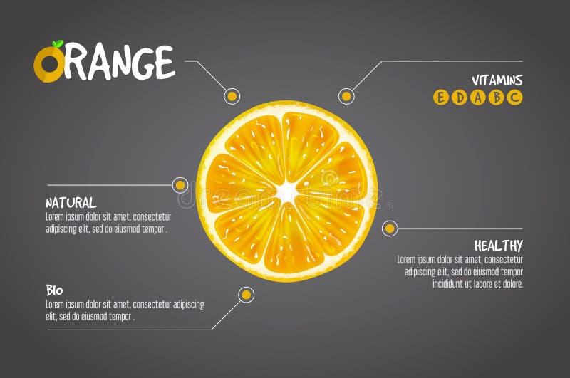 Infographics arancio Illustrazione di vettore di frutta fresca dell'agrume su fondo grigio immagine stock libera da diritti