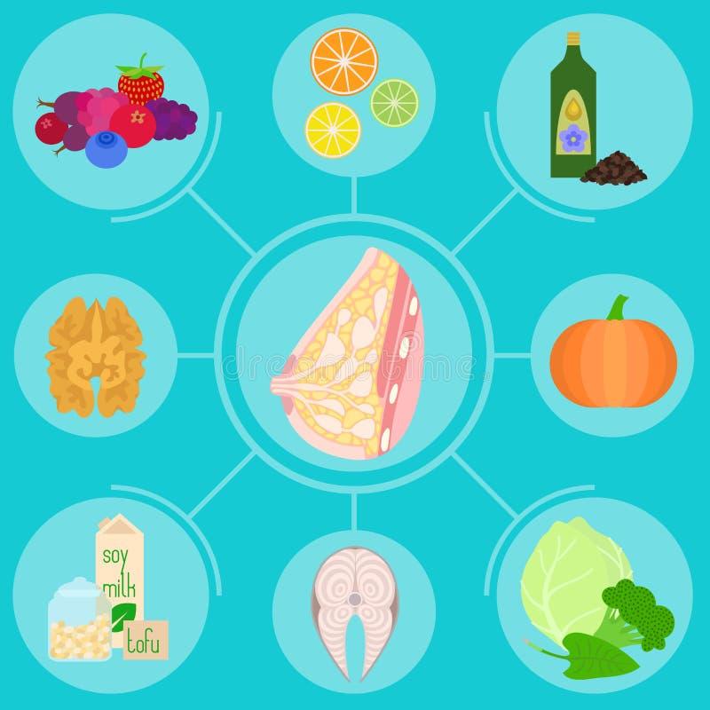 Infographics avec des nourritures utiles pour le sein femelle, glande mammaire illustration stock