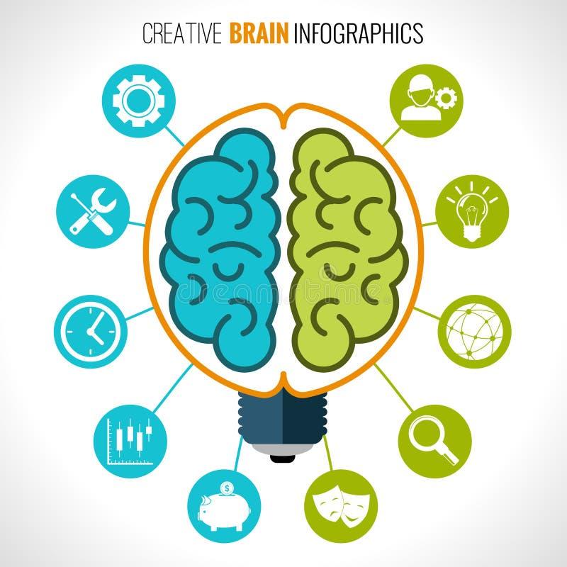 Infographics creativo del cerebro ilustración del vector