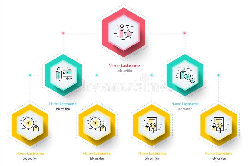 Infographics da carta do organogram da hierarquia do negócio incorporado ilustração stock