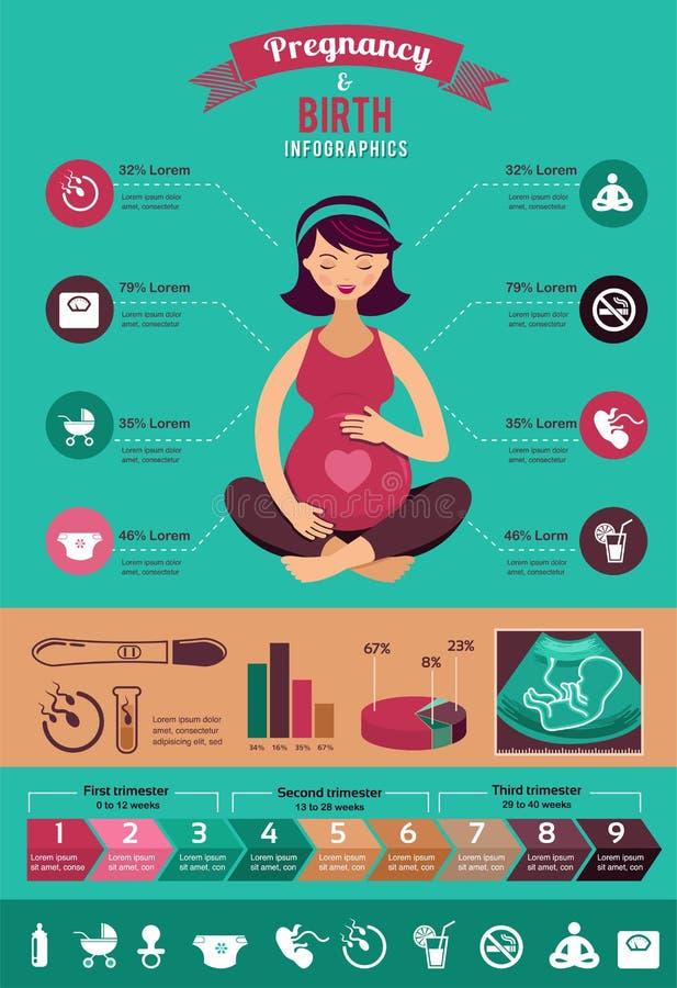 Infographics da gravidez e do nascimento, grupo do ícone ilustração do vetor
