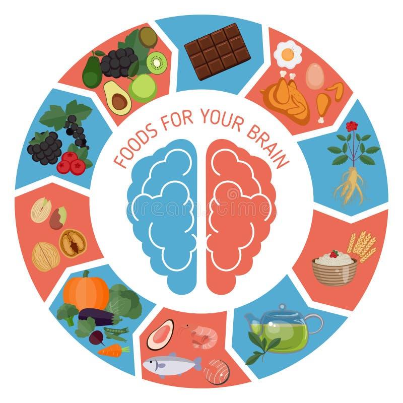 Infographics de Brain Foods ilustração stock