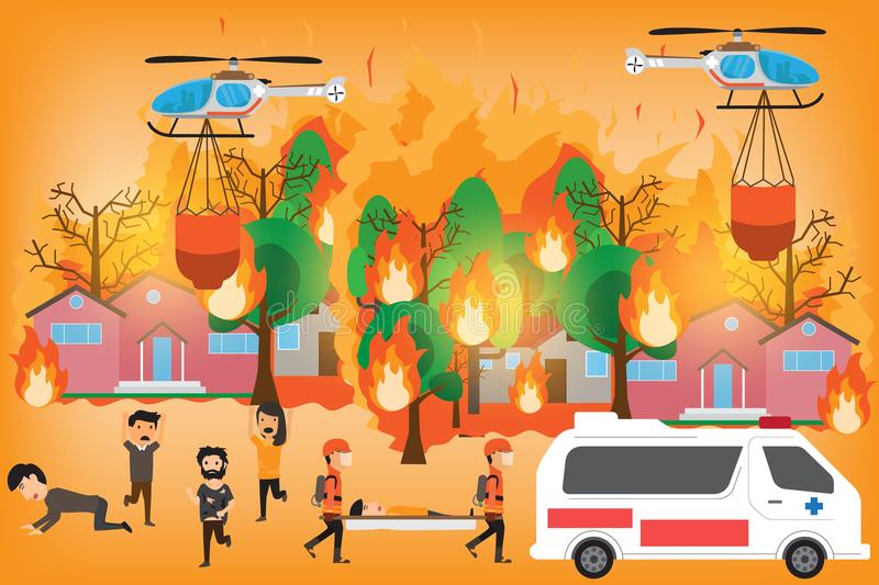 Infographics de Forest Fire Arbres forestiers brûlants en flammes d'incendie illustration de vecteur