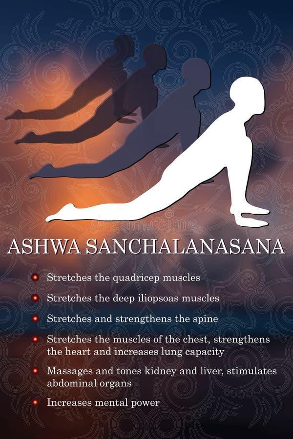 Infographics de la actitud de la yoga, ventajas de la práctica ilustración del vector