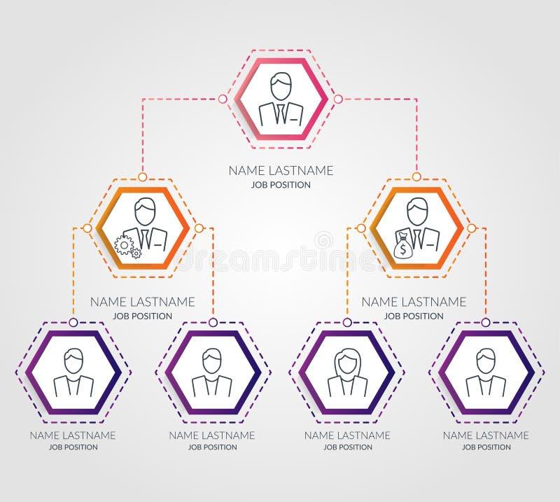 Infographics de la carta del hexágono de la jerarquía del negocio Elementos corporativos del gráfico de la estructura de organiza ilustración del vector