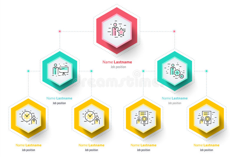 Infographics de la carta del organogram de la jerarquía del negocio corporativo stock de ilustración