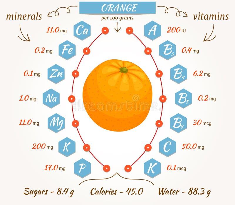 Infographics de la naranja del vector ilustración del vector