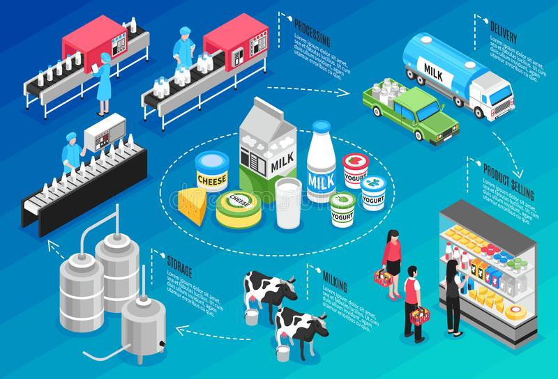 Infographics de la producción de leche stock de ilustración