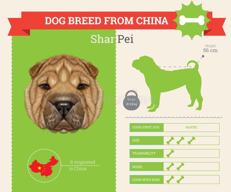 Infographics de la raza de Shar Pei Dog stock de ilustración