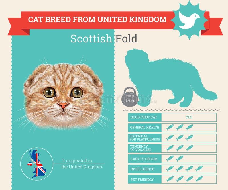 Infographics de la raza del gato del doblez del escocés libre illustration