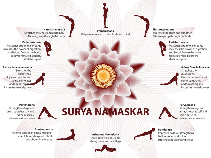Infographics de yoga, ordre de Surya Namaskar illustration stock