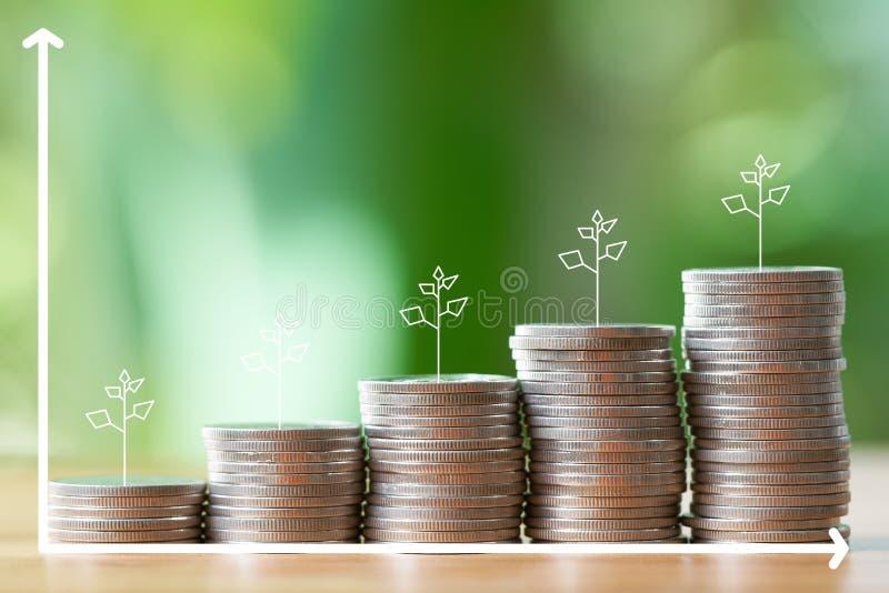 Infographics del concepto del dinero, financiero, del negocio del crecimiento, de la pila de monedas al pensamiento y de la plani fotografía de archivo libre de regalías