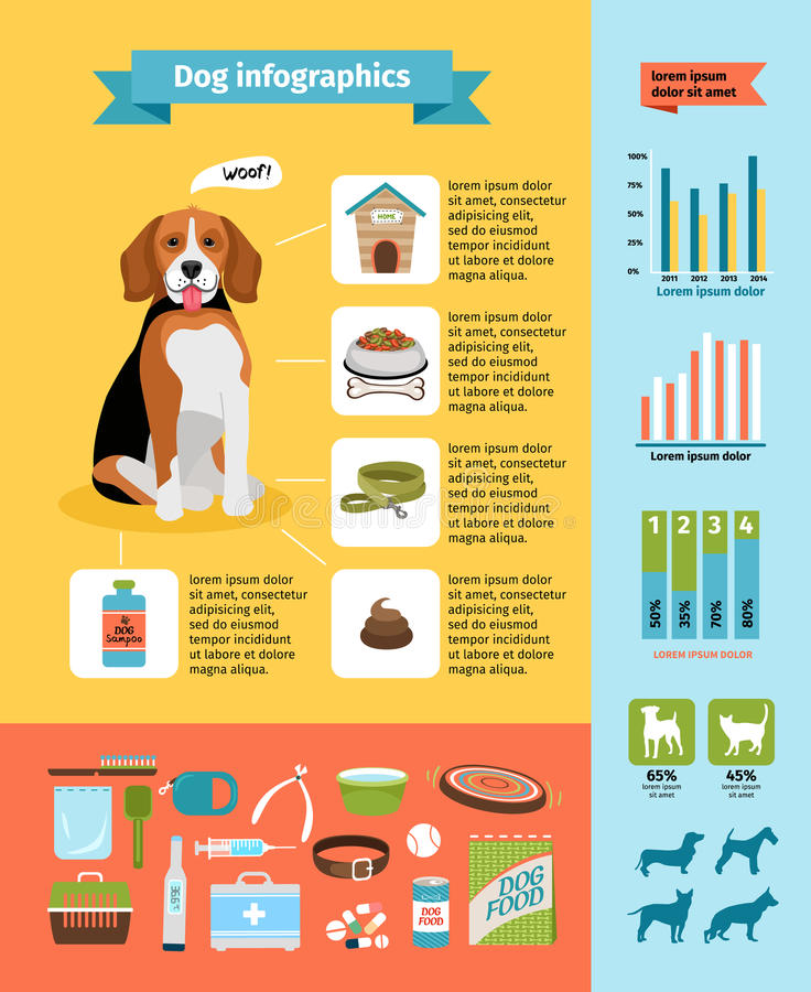 Infographics del perro libre illustration