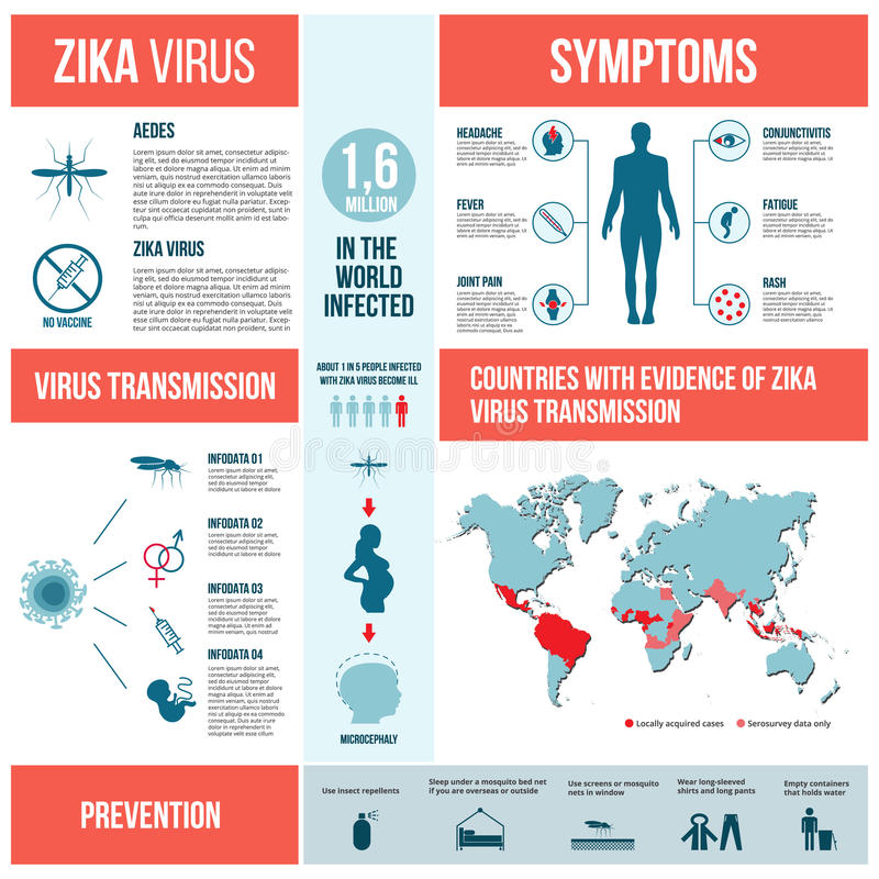 Infographics del virus di Zika illustrazione di stock