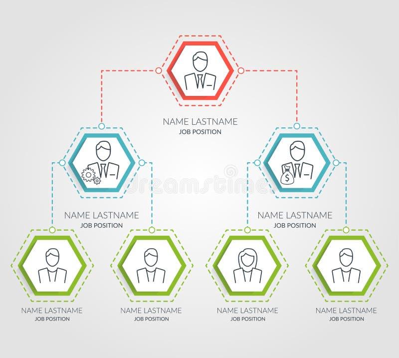 Infographics för diagram för affärshierarkisexhörning Företags diagrambeståndsdelar för organisatorisk struktur Företagsorganisat vektor illustrationer