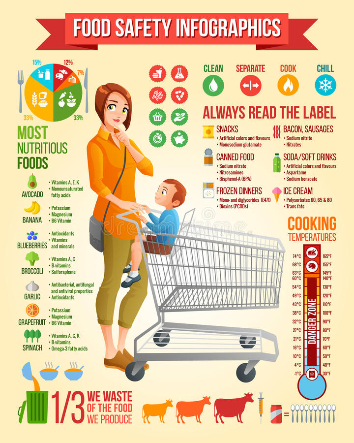 Infographics för matsäkerhet Moder med sonsammanträde i illustration för vektor för shoppingvagn Infographic vektoruppsättning me stock illustrationer