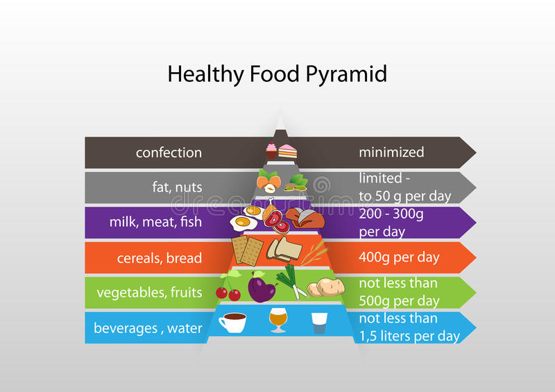 Infographics healthy eating stock illustration