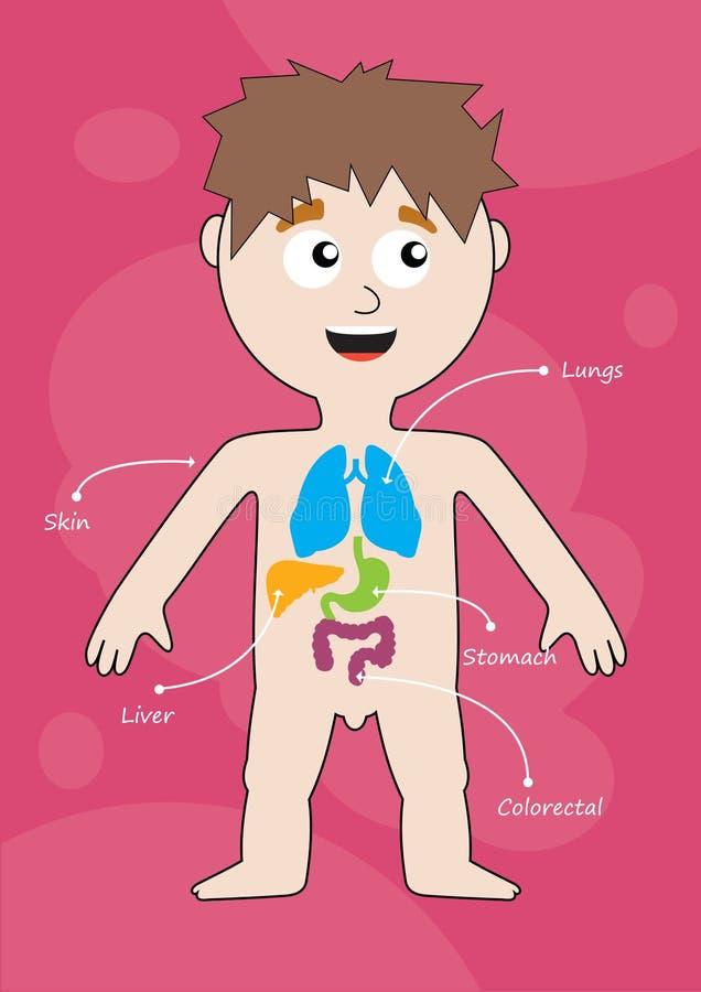 Infographics médico. ilustração do vetor