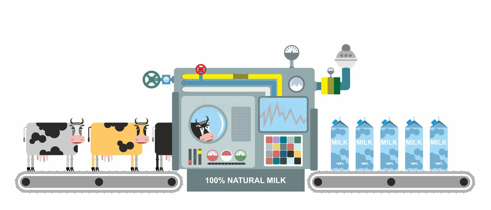 Infographics milk production. Stages of milk production from co vector illustration