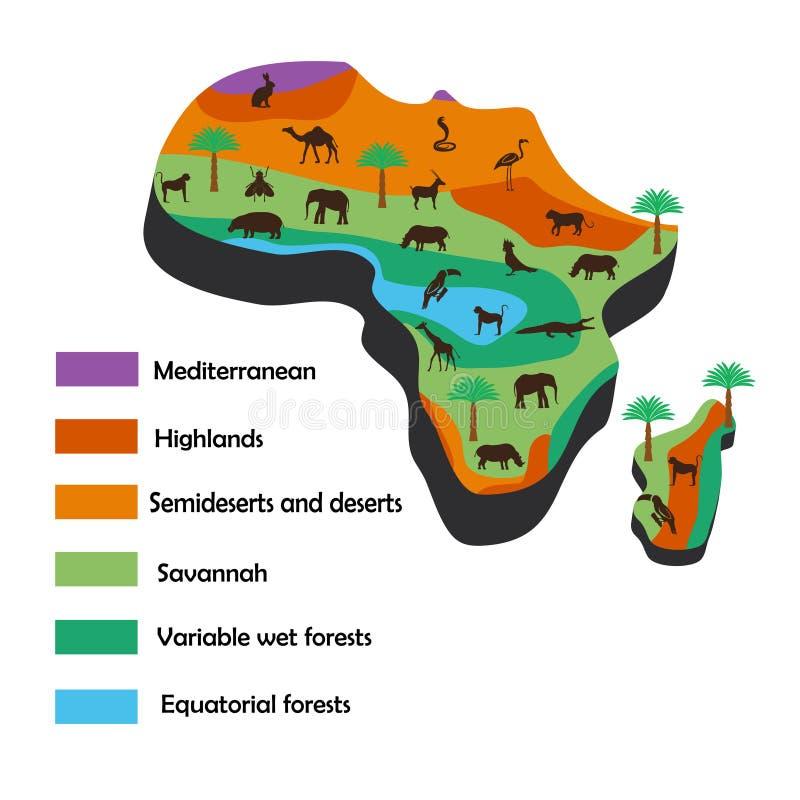 Infographics przedstawia naturalne klimatyczne strefy Afryka i
