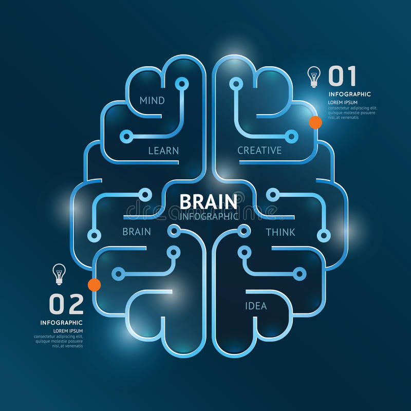 Infographics vector brain design diagram banner line style. vector illustration
