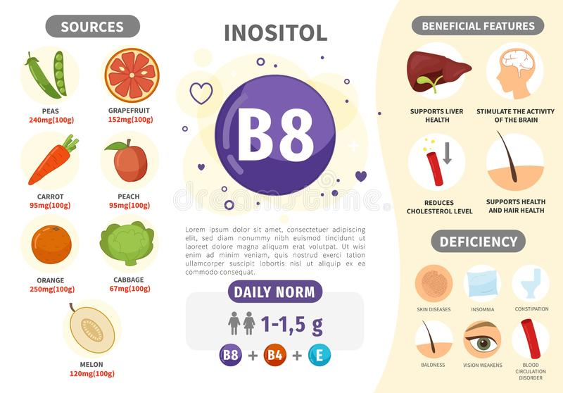 Infographics Vitamin B8. Products containing vitamin. Daily norm. Symptoms of deficiency. Vector medical poster royalty free illustration
