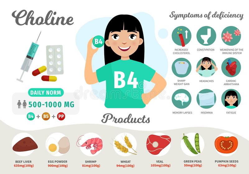 Infographics Vitamin B4. Products containing vitamin. Symptoms of deficiency. Vector medical poster. Illustration of cartoon cute girl stock illustration