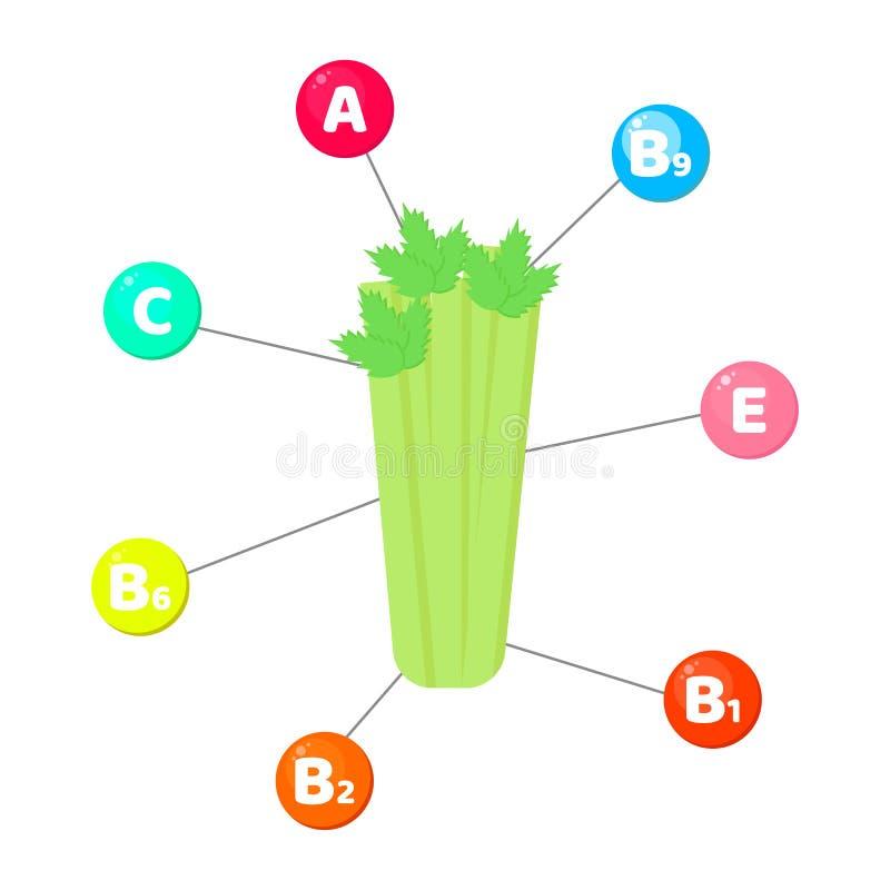 Infographics vitaminen in groenten spoorelementen in gekleurde cirkels selderie vector illustratie