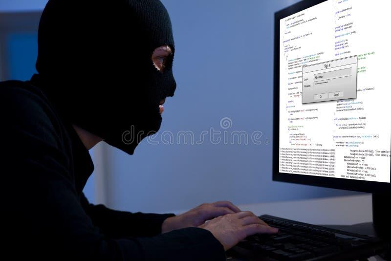 Informação da transferência do cabouqueiro fora de um computador fotografia de stock