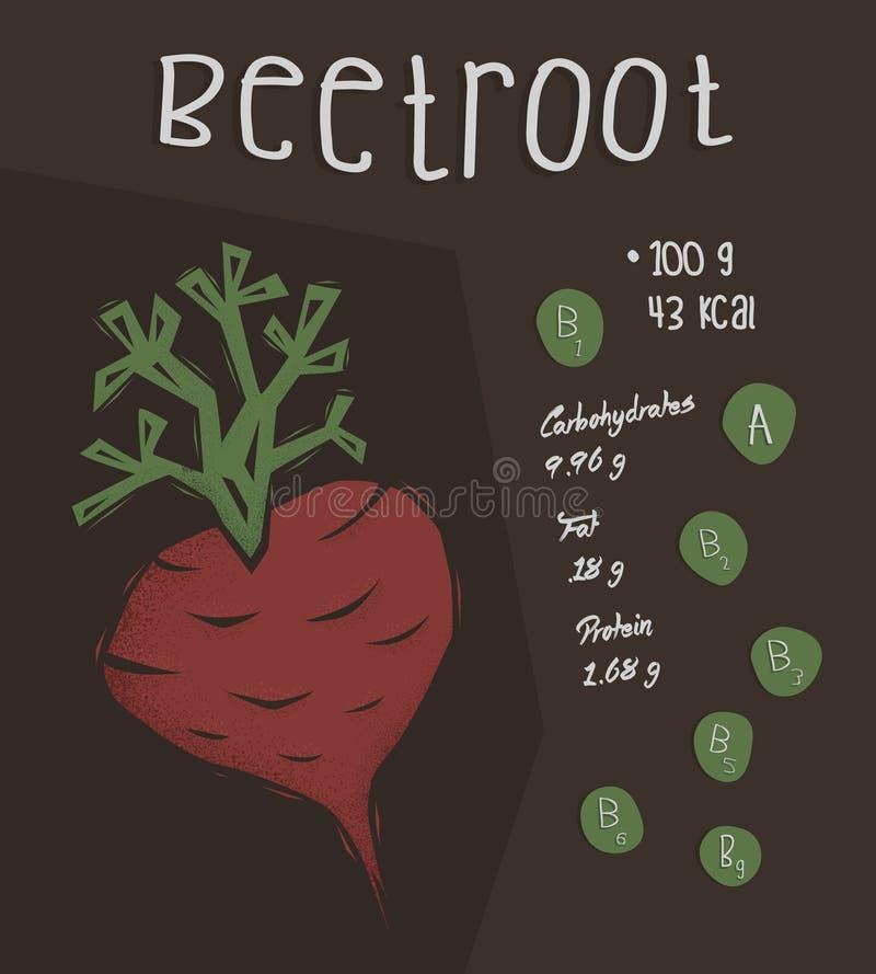 Información de remolachas, concepto de los hechos de la nutrición stock de ilustración