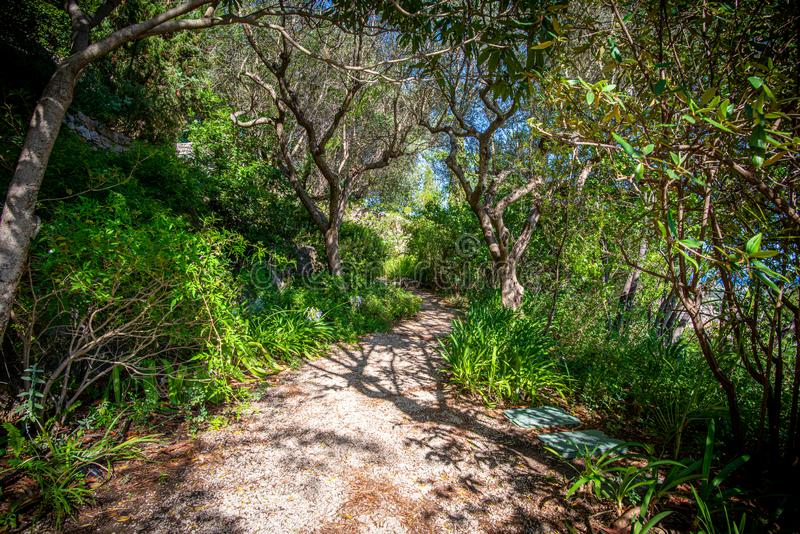 Informal footpath through a Mediterranean garden, Provence royalty free stock photography