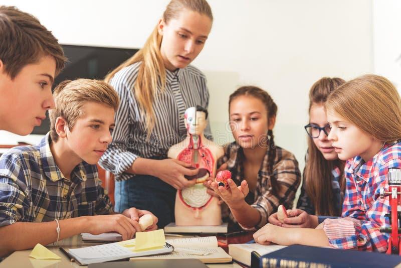 Informativ kurs för spänt uppmärksam tonåringar arkivbilder
