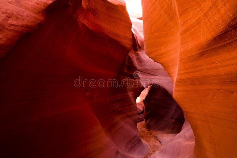 Inforni il labirinto dell'arenaria in canyon più basso dell'antilope in pagina Ari immagini stock