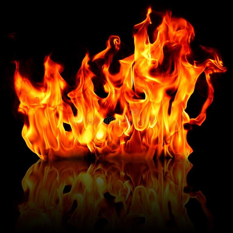 Inforni la fiamma isolata & la riflessione fotografie stock