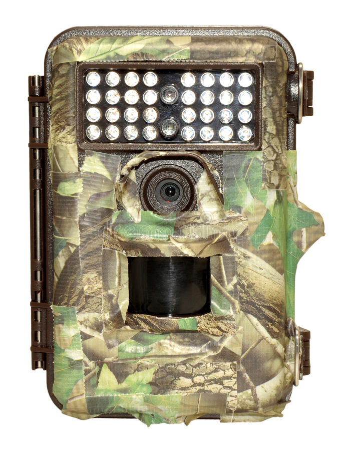 Free Infra Red Wildlife Trail Camera Royalty Free Stock Image - 39754796