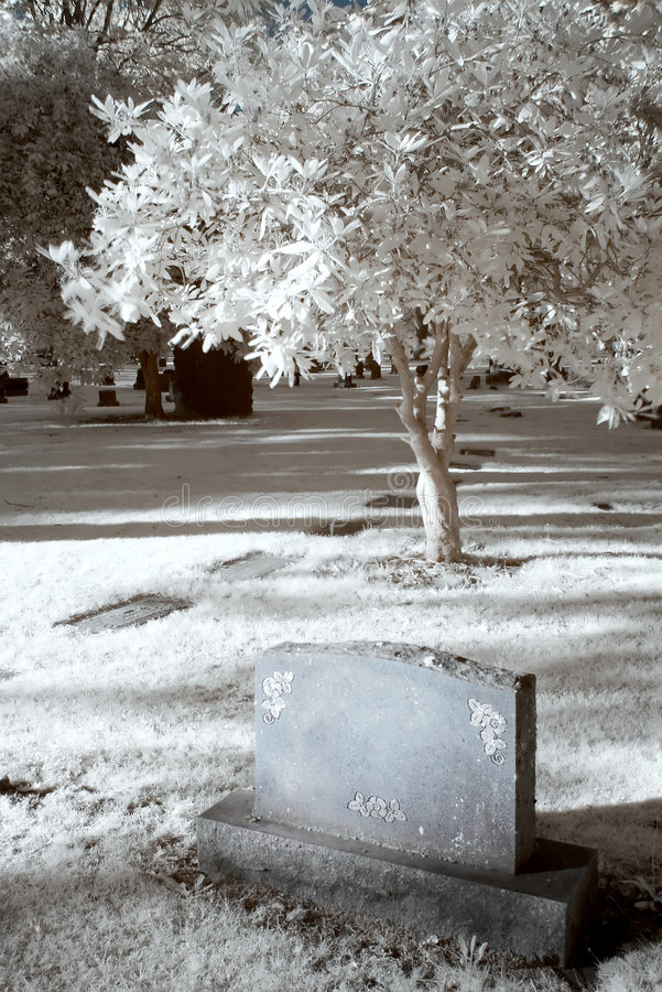 Infrared Cemetary. Blank headstone in an infrared cemetary stock image